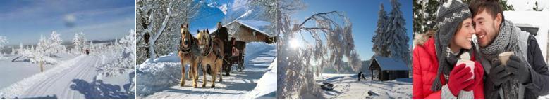 <span>Winter</span> Arrangementen